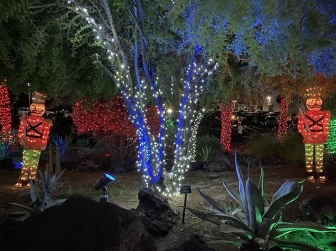 Sneak Peak of the beautiful lights at Ethel M Chocolate Factory. A winter wonderland in the middle of the desert.