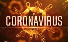 Coronavirus, an Outbreak