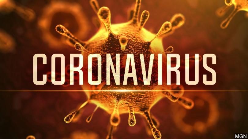 Coronavirus%2C+an+Outbreak