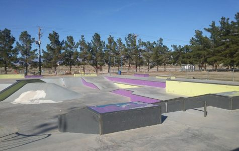 Picture of Honeysuckle park's skate park.