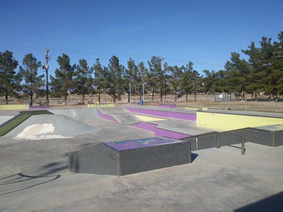 "Shining ""Lights"" On the skate park"