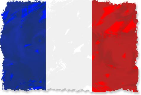 https://jooinn.com/grunge-french-flag.html